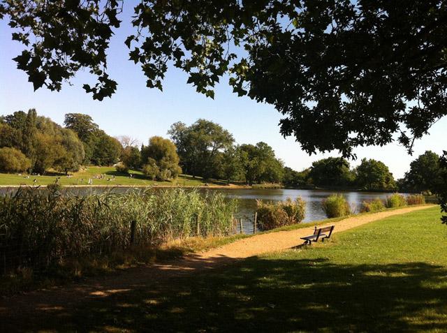 Hampstead_heath_Callender_Howorth
